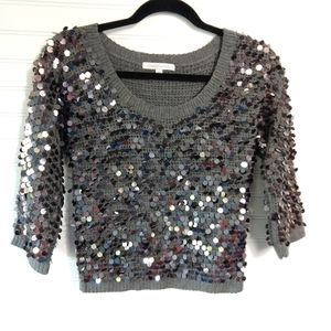 COREY LYNN CALTER | Gray Sequined Sweater Size Sm